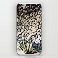 cactus... iPhone & iPod Skin