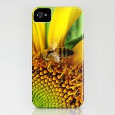 Pollination Slim Case iPhone (4, 4s)