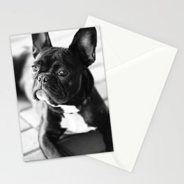 French Bulldog Stationery Cards