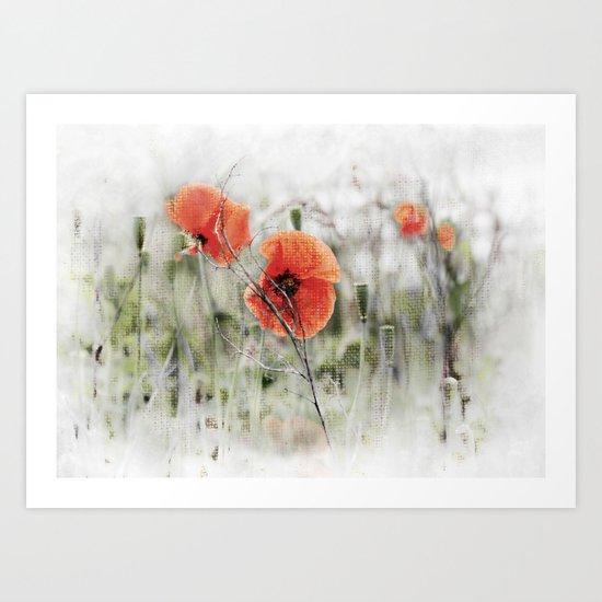 Poppies(mist). Art Print