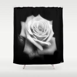Pink Roses in Anzures 4 Dark Shower Curtain
