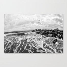 Calm V Canvas Print