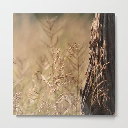 Summer Grass and Tree Metal Print
