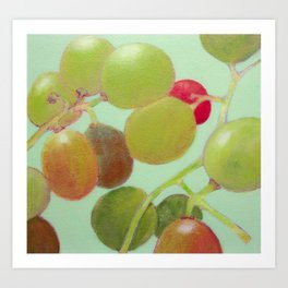 Grapes #8 Art Print