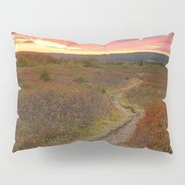 Dolly Sods Twilight Trail Pillow Sham