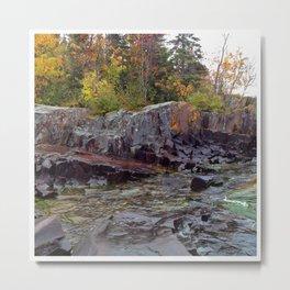 Rock and Foliage Metal Print
