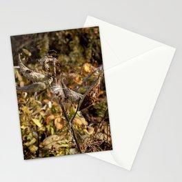 Milkweed Pods Bugs Stationery Cards