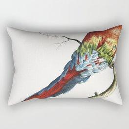 Pappagallo detto arara rossa del Brasile (Macaw) by Saverio Manetti (1723-1785) Rectangular Pillow