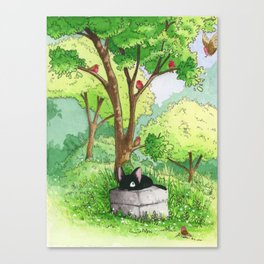 Cat and birds Canvas Print