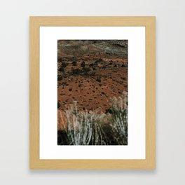 Desert Sun Framed Art Print
