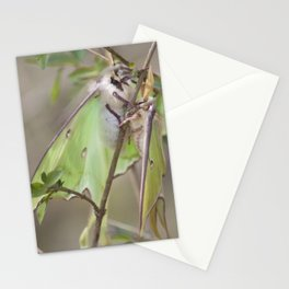 Luna Moths Stationery Cards