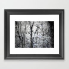 The Woods Framed Art Print
