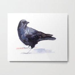 Crow #3 Metal Print