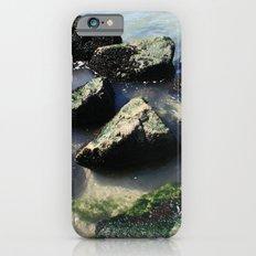 Endless Summer Beach  iPhone 6s Slim Case