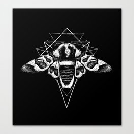 Geometric Moth 2 Canvas Print