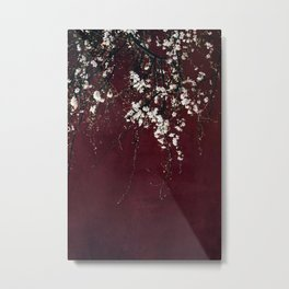blossoms on ruby red Metal Print