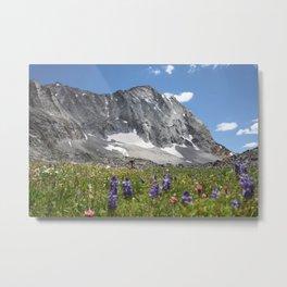 Capitol Peak in Summer Metal Print