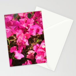 Bright and happy pink flowers Stationery Cards