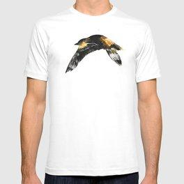 Oriole T-shirt