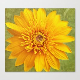 Sunshine Smile Canvas Print
