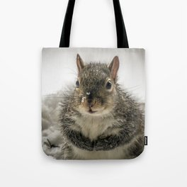 Adorable Praying Squirrel..Feed ME!! Tote Bag