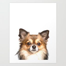 Chihuahua Portrait Art Print