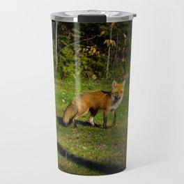 Garden Fox Travel Mug