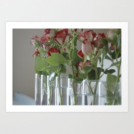 Roses in Canandaigua Art Print