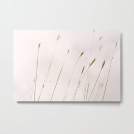 Tall grass against cloudy sky Metal Print