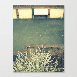back yard. Canvas Print