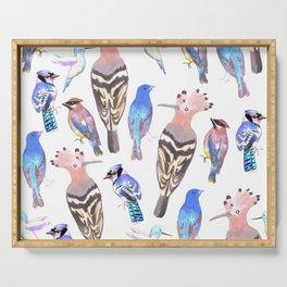 Birds watercolor in tetrad color scheme Serving Tray