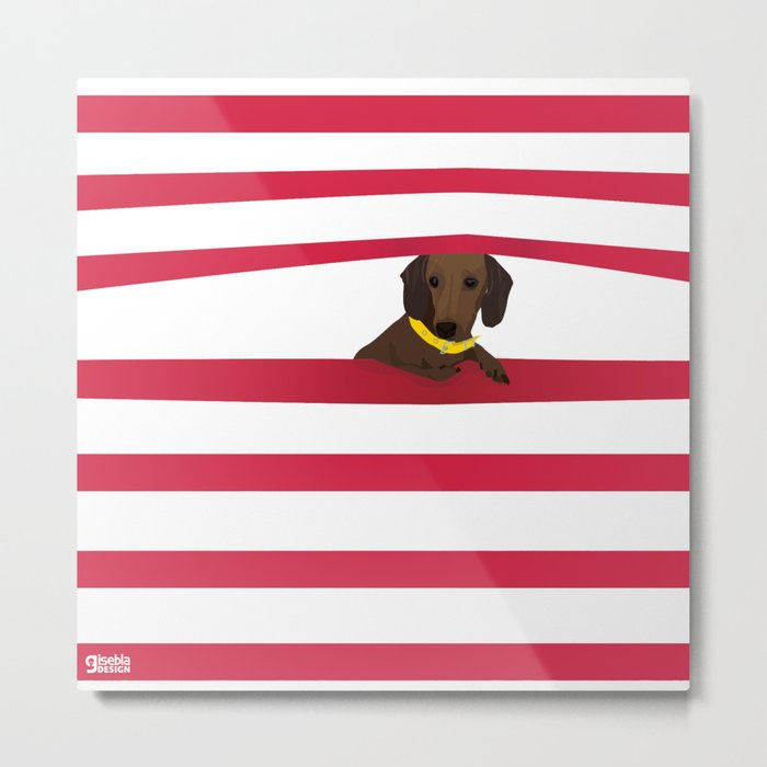 A little dog, Florita Metal Print