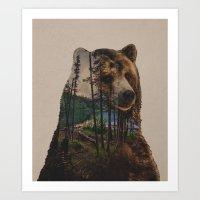 lake Art Prints featuring Bear Lake by Davies Babies