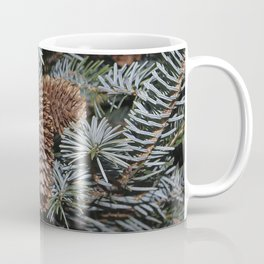 Spruce Cones And Branches Coffee Mug