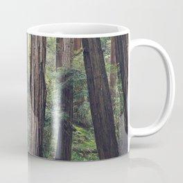 The Redwoods at Muir Woods Coffee Mug