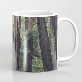The Redwoods at Muir Woods Coffee Mug