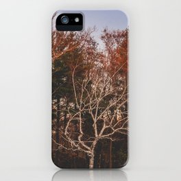 Himalaya Wanderings iPhone Case