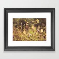 Summer Fields   01 Framed Art Print
