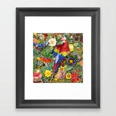 Red Parrot Framed Art Print