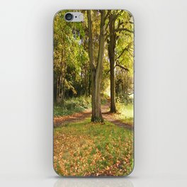 AUTUMN IN CHISELHURST iPhone Skin