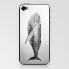 Whale iPhone & iPod Skin