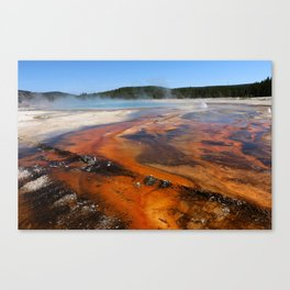 Nature Is Amazing Canvas Print