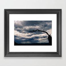 Lonely Tree Landscape Framed Art Print