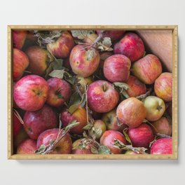 Pile of freshly picked organic farm apples with imperfections Serving Tray