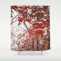 daria Shower Curtains featuring rowan-tree by Dar'ya Vlasova
