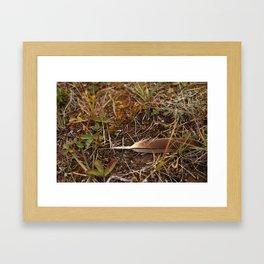 Grande Cache 5 Framed Art Print