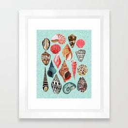 Seashells ocean nautical beach seaside children kids baby home dec shell illustration Andrea Lauren Framed Art Print