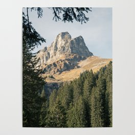 Mountain and Woods Poster