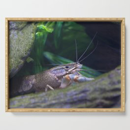 The crayfish Serving Tray