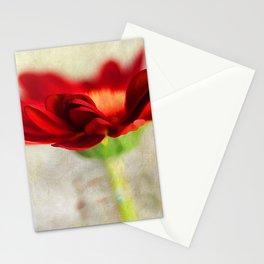 Gerber Beauty Stationery Cards